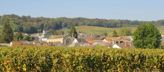 Pourquoi visiter Avize petit village de la Marne ?